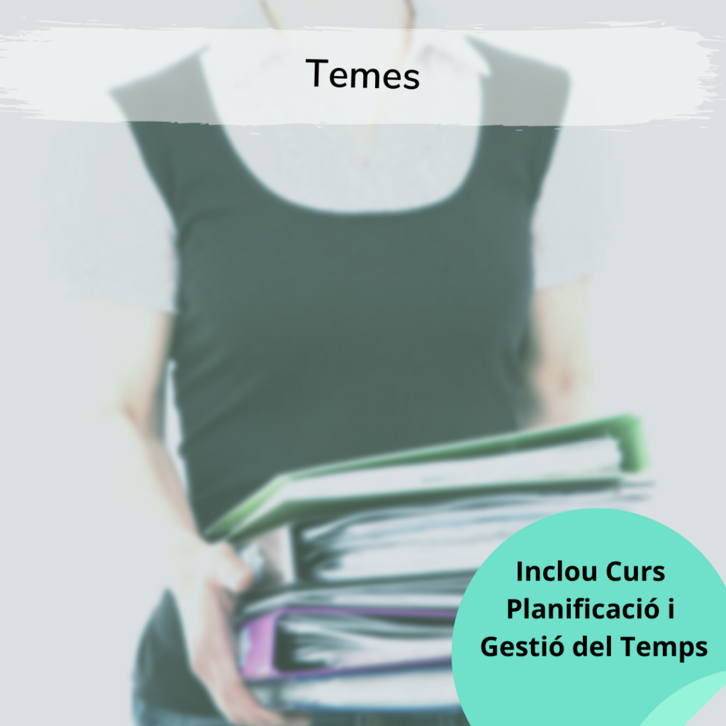 temes curs